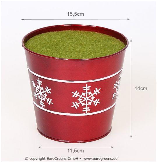 Weihnachtlicher roter Blumentopf mit Steckmasse