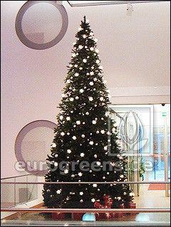 künstlicher Luvi Weihnachtsbaum Amberly 400cm